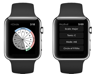 Use your Apple Watch to control KeyBud.